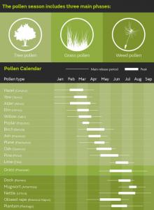 pollen_calendar_infographic_2017 (1)